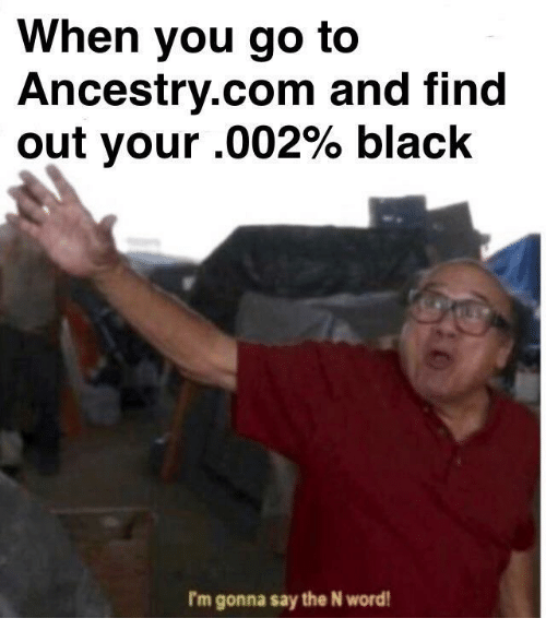 ancestry.com: When you go to  Ancestry.com and find  out your .002% black  I'm gonna say the N word