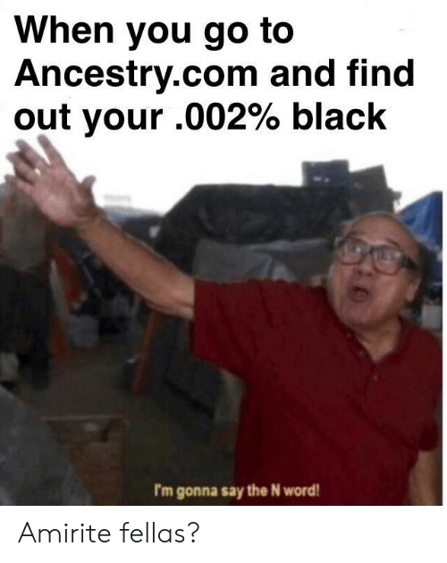 ancestry.com: When you go to  Ancestry.com and find  out your .002% black  I'm gonna say the N word Amirite fellas?