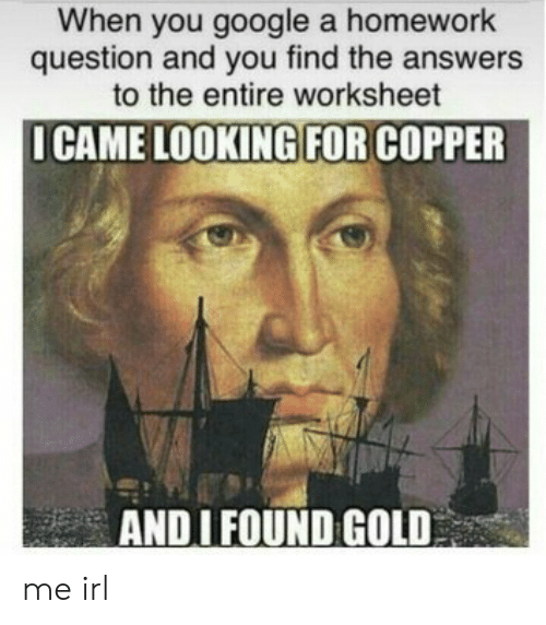 Google, Homework, and Irl: When you google a homework  question and you find the answers  to the entire worksheet  ICAME LOOKING FOR COPPER  ANDI FOUND GOLD me irl