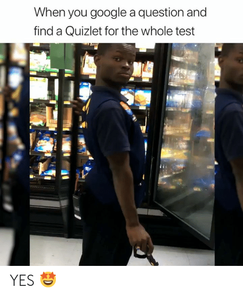 Google, Quizlet, and Test: When you google a question and  find a Quizlet for the whole test YES 🤩