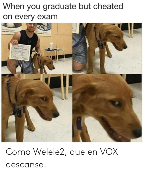 Vox, Que, and You: When you graduate but cheated  on every exam Como Welele2, que en VOX descanse.