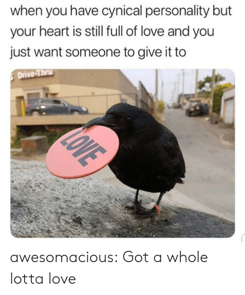 When You Have: when you have cynical personality but  your heart is still full of love and you  just want someone to give it to  Drive-Thru  LOVE awesomacious:  Got a whole lotta love