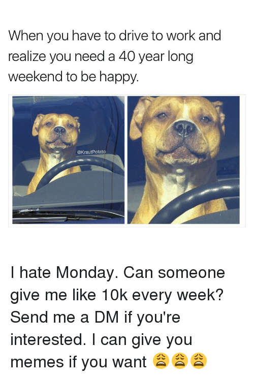 A Dm: When you have to drive to work and  realize you need a 40 year long  weekend to be happy.  @Kraut Potato I hate Monday. Can someone give me like 10k every week? Send me a DM if you're interested. I can give you memes if you want 😩😩😩