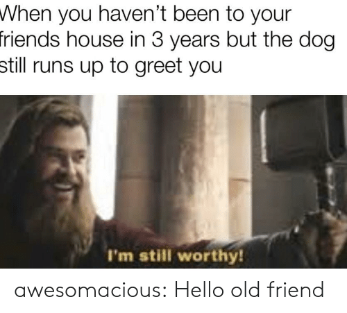 When You Havent: When you haven't been to your  friends house in 3 years but the dog  still runs up to greet you  I'm still worthy! awesomacious:  Hello old friend