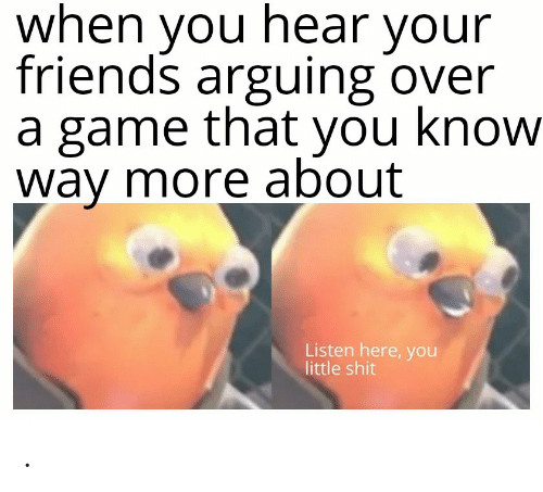 Friends, Funny, and Shit: when you hear your  friends arguing over  a game that you know  way more about  Listen here, you  little shit .