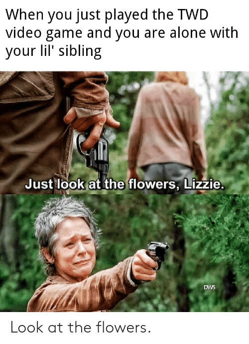 just look at the flowers: When you just played the TWD  video game and you are alone with  your lil' sibling  Just look at the flowers, Lizzie.  DWS Look at the flowers.