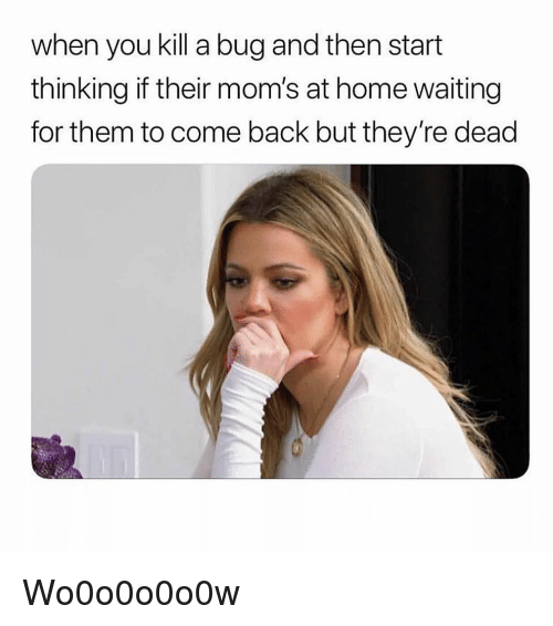 Moms, Home, and Girl Memes: when you kill a bug and then start  thinking if their mom's at home waiting  for them to come back but they're dead Wo0o0o0o0w
