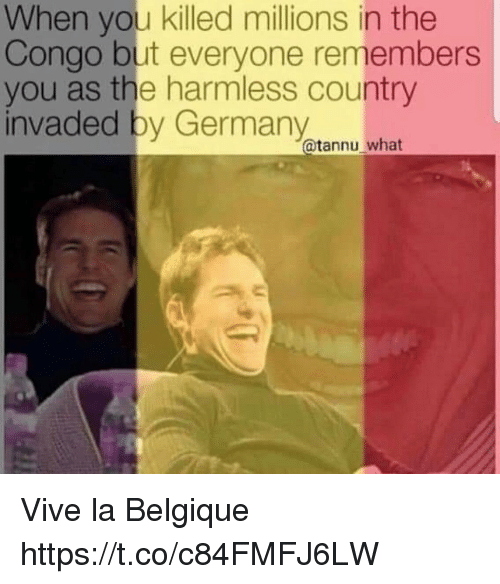 congo: When you killed millions in the  Congo but everyone remembers  you as the harmless country  invaded by Germany  @tannu what Vive la Belgique https://t.co/c84FMFJ6LW
