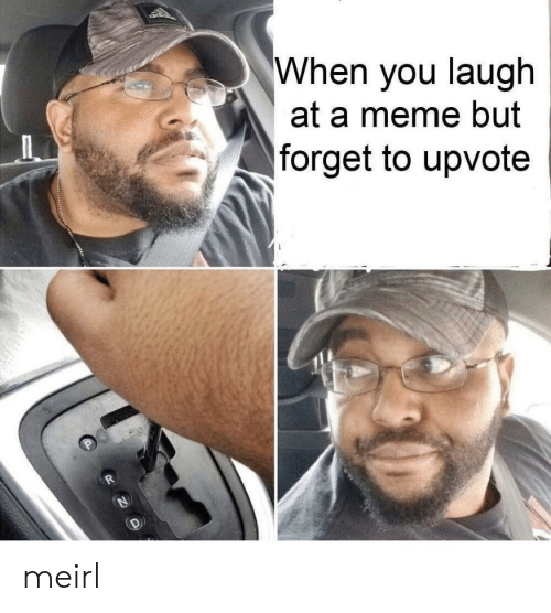 Meme, MeIRL, and You: When you laugh  at a meme but  forget to upvote meirl