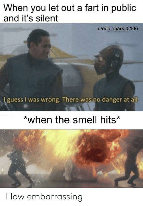 The Smell: When you let out a fart in public  and it's silent  u/eddiepark_0106  I guess I was wrong. There was no danger at all.  *when the smell hits* How embarrassing