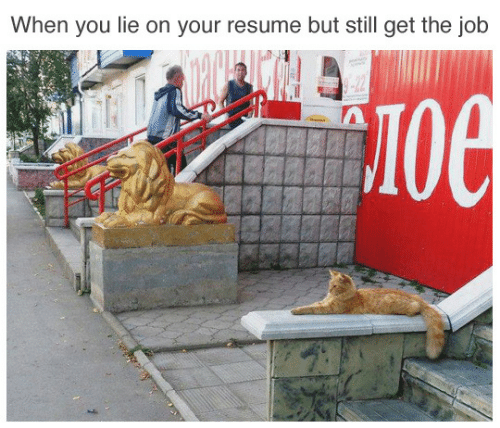 When You Lie On Your Resume: When you lie on your resume but still get the job