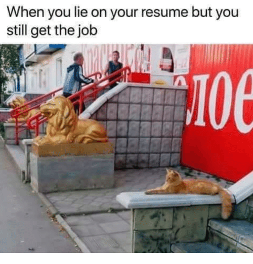 When You Lie On Your Resume: When you lie on your resume but you  still get the job  10e