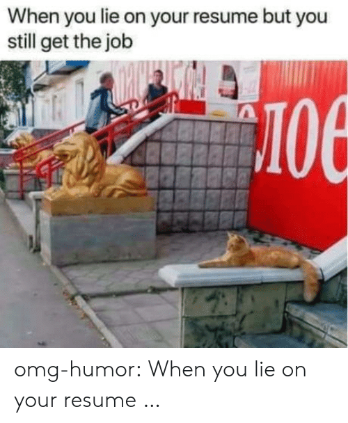 When You Lie On Your Resume: When you lie on your resume but you  still get the job  лое omg-humor:  When you lie on your resume …