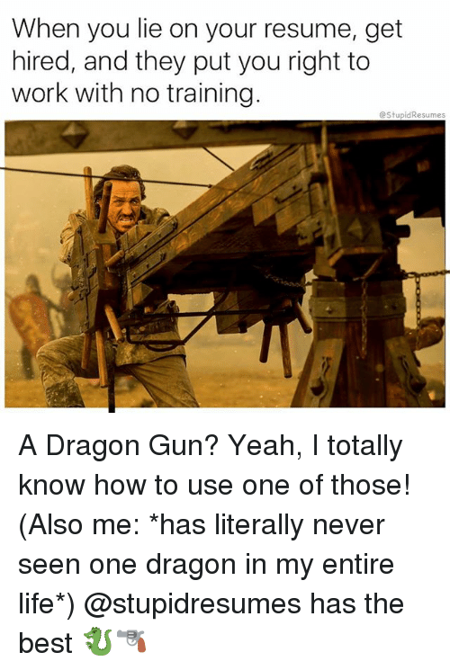 When You Lie On Your Resume: When you lie on your resume, get  hired, and they put you right to  work with no training.  @StupidResumes A Dragon Gun? Yeah, I totally know how to use one of those! (Also me: *has literally never seen one dragon in my entire life*) @stupidresumes has the best 🐉🔫