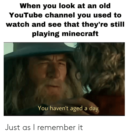 Playing Minecraft: When you look at an old  YouTube channel you used to  watch and see that they're still  playing minecraft  You haven't aged a day Just as I remember it