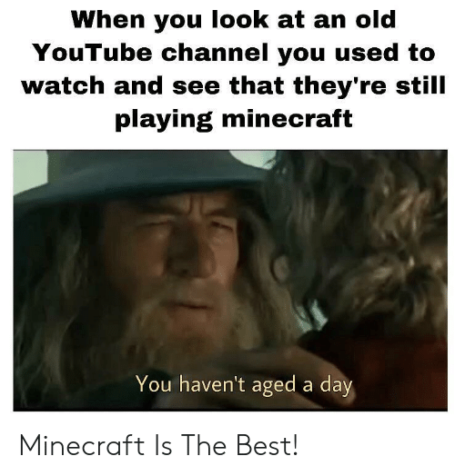 Playing Minecraft: When you look at an old  YouTube channel you used to  watch and see that they're still  playing minecraft  You haven't aged a day Minecraft Is The Best!