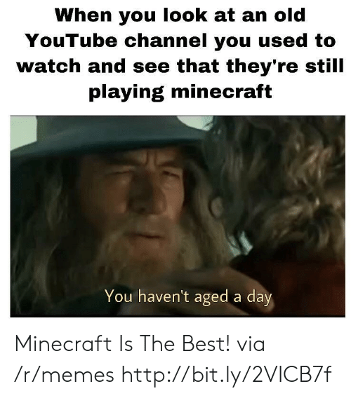 Playing Minecraft: When you look at an old  YouTube channel you used to  watch and see that they're still  playing minecraft  You haven't aged a day Minecraft Is The Best! via /r/memes http://bit.ly/2VICB7f