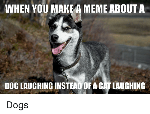 Dog Laughing: WHEN YOU MAKE A MEME ABOUTA  DOG LAUGHING INSTEAD OF A CAT LAUGHING