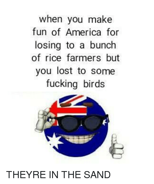 America, Fucking, and Lost: when you make  fun of America for  losing to a bunch  of rice farmers but  you lost to some  fucking birds THEYRE IN THE SAND