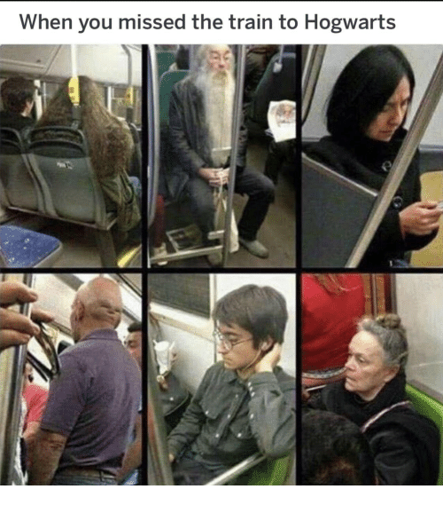 Train, Hogwarts, and You: When you missed the train to Hogwarts