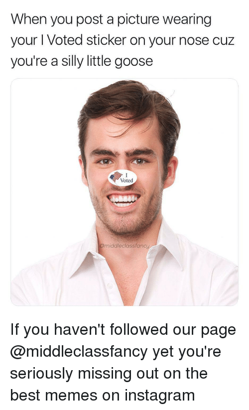 Instagram, Memes, and Best: When you post a picture wearing  your I Voted sticker on your nose cuz  you're a silly little goose  Voted  @middleclassfancy If you haven't followed our page @middleclassfancy yet you're seriously missing out on the best memes on instagram