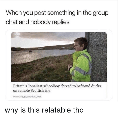 Group Chat, Chat, and Ducks: When you post something in the group  chat and nobody replies  Britain's loneliest schoolboy' forced to befriend ducks  on remote Scottish isle  WWW.TELEGRAPH CO UK why is this relatable tho
