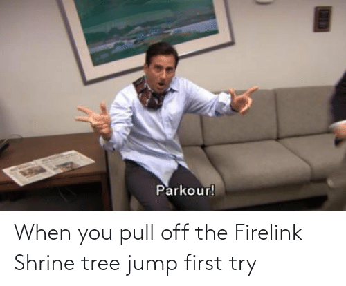 Tree, First, and You: When you pull off the Firelink Shrine tree jump first try