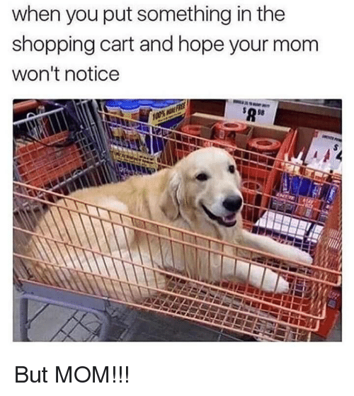 Shopping, Hope, and Mom: when you put something in the  shopping cart and hope your mom  won't notice  98 But MOM!!!