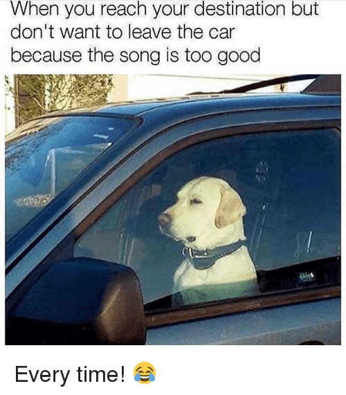 Memes, Good, and Time: When you reach your destination but  don't want to leave the car  because the song is too good Every time! 😂