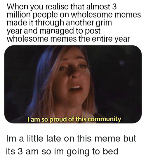 Im A Little: When you realise that almost 3  million people on wholesome memes  made it through another grim  year and managed to post  wholesome memes the entire year  I am so proud of this community Im a little late on this meme but its 3 am so im going to bed