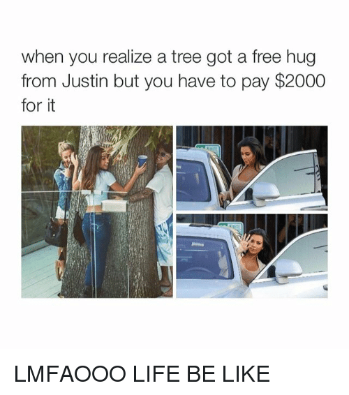 free hug: when you realize a tree got a free hug  from Justin but you have to pay $2000  for it LMFAOOO LIFE BE LIKE