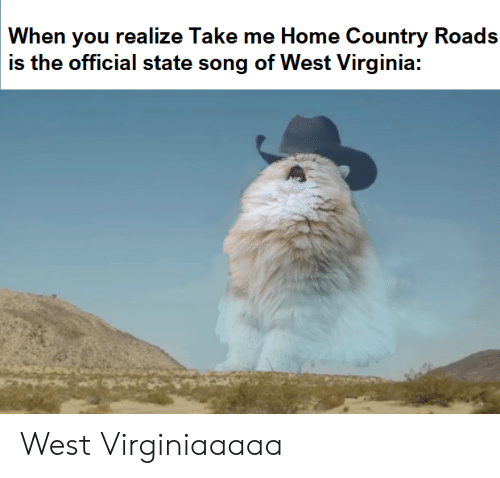 Take Me Home: When you realize Take me Home Country Roads  is the official state song of West Virginia: West Virginiaaaaa