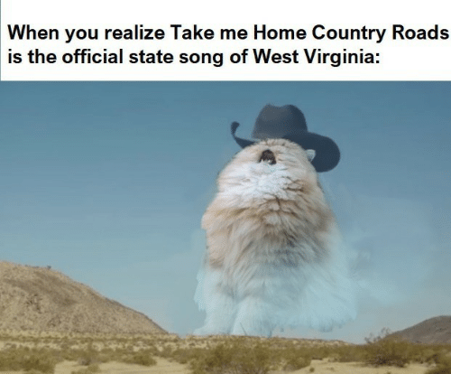 Take Me Home: When you realize Take me Home Country Roads  is the official state song of West Virginia: