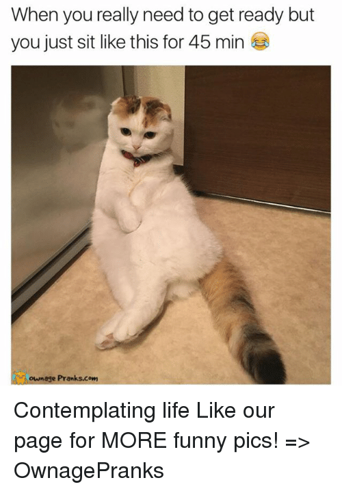 contemplation: When you really need to get ready but  you just sit like this for 45 min  own age Pranks.com Contemplating life  Like our page for MORE funny pics! => OwnagePranks