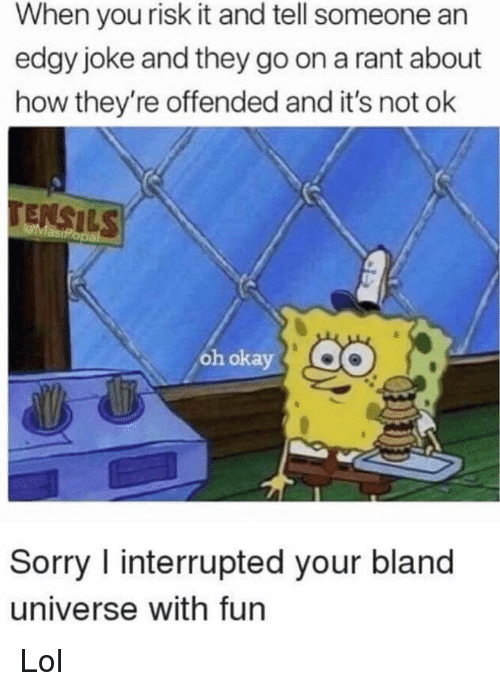 Lol, Memes, and Sorry: When you risk it and tell someone an  edgy joke and they go on a rant about  how they're offended and it's not ok  oh okay  Sorry I interrupted your bland  universe with fun Lol