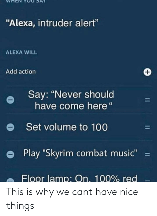 "Anaconda, Music, and Skyrim: WHEN YOU SAY  ""Alexa, intruder alert""  15  ALEXA WILL  Add action  Say: ""Never should  have come here""  e  Set volume to 100  e Play ""Skyrim combat music-  Floor lamp: On. 100% red This is why we cant have nice things"
