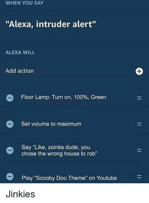 """Anaconda, Dude, and Scooby Doo: WHEN YOU SAY  """"Alexa, intruder alert""""  ALEXA WILL  Add action  Floor Lamp: Turn on, 100% Green  Set volume to maximum  Say """"Like, zoinks dude, you  chose the wrong house to rob""""  Play """"Scooby Doo Theme"""" on Youtube Jinkies"""