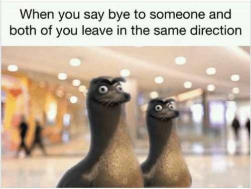 You, When You, and Someone: When you say bye to someone and  both of you leave in the same direction