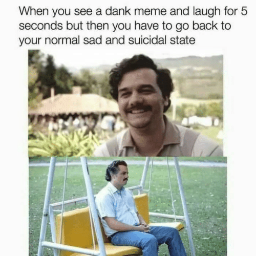 Dank Meme: When you see a dank meme and laugh for 5  seconds but then you have to go back to  your normal sad and suicidal state