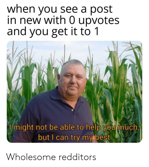 Best, Help, and Wholesome: when you see a post  in new with 0 upvotes  and you get it to 1  I might not be able to help you much,  but I can try my best Wholesome redditors