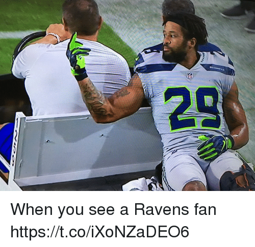 Mike Tomlin, Ravens, and You: When you see a Ravens fan https://t.co/iXoNZaDEO6