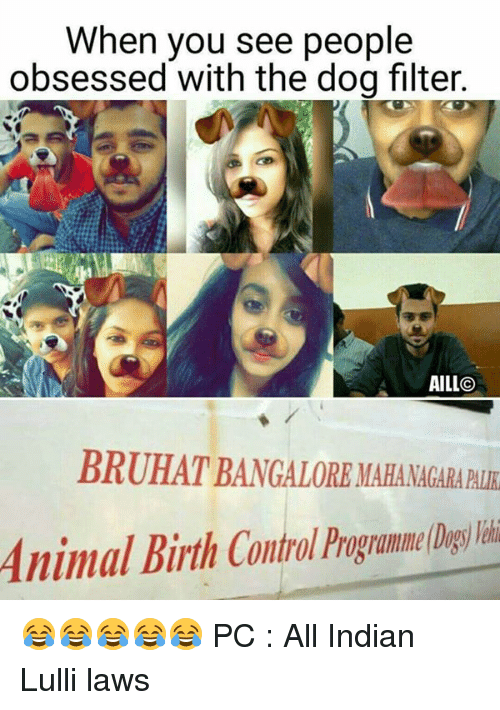 bangalore: When you see people  obsessed with the dog filter.  AILL CO  BRUHAT BANGALORE MAHA MACARABUR 😂😂😂😂😂  PC : All Indian Lulli laws