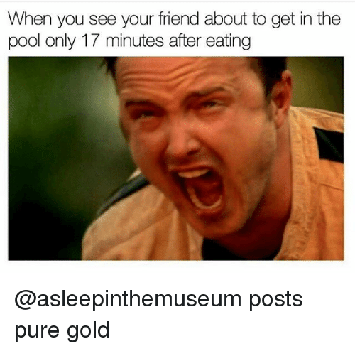 Pured: When you see your friend about to get in the  pool only 17 minutes after eating @asleepinthemuseum posts pure gold