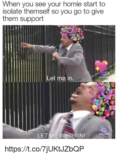 Homie, Memes, and 🤖: When you see your homie start to  isolate themself so you go to give  them support  adult  Let me in.  LET ME IIIN  faduit swlm) https://t.co/7jUKtJZbQP