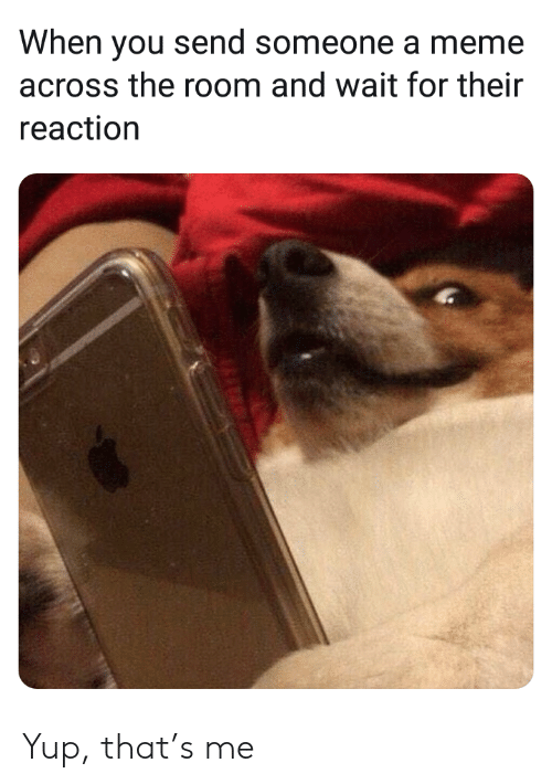 Meme, You, and For: When you send someone a meme  across the room and wait for their  reaction Yup, that's me