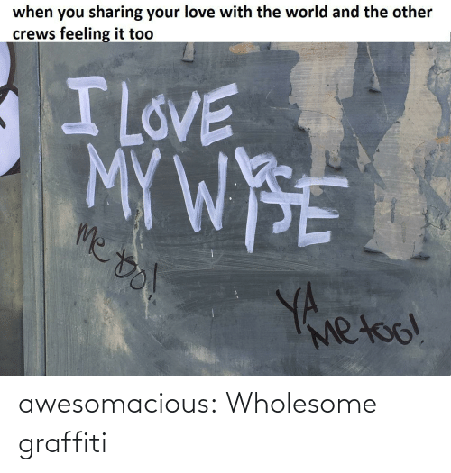 your love: when you sharing your love with the world and the other  crews feeling it too  I LOVE  MYWPSE  me to  Yherl  Metoo! awesomacious:  Wholesome graffiti