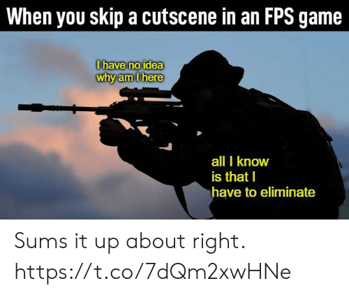 Video Games, Game, and Idea: When you skip a cutscene in an FPS game  0have no idea  why am Ihere  all I know  is that I  have to eliminate Sums it up about right. https://t.co/7dQm2xwHNe