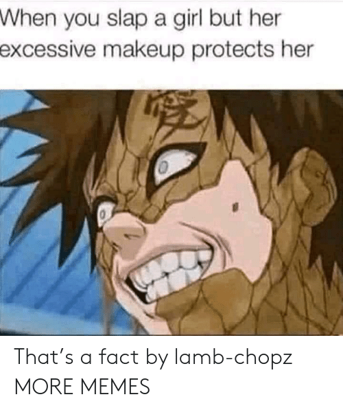 Dank, Makeup, and Memes: When  you slap a girl but her  excessive  makeup protects her That's a fact by lamb-chopz MORE MEMES