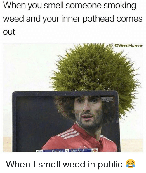 Smell, Smoking, and Weed: When you smell someone smoking  weed and your inner pothead comes  out  @WeedHumor  Man Utd When I smell weed in public 😂