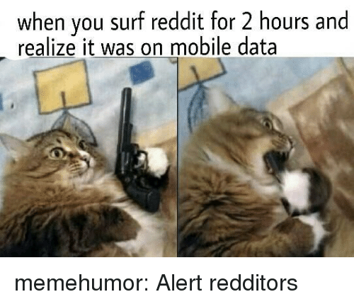 Reddit, Tumblr, and Blog: when you surf reddit for 2 hours and  realize it was on mobile data memehumor:  Alert redditors